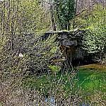 Chorgunsky bridge
