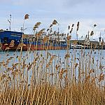 Lebyazhya Bay