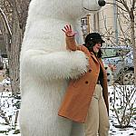 Polar bear_5