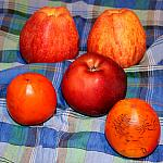 Still lifes with persimmon_5