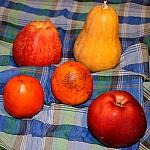 Still lifes with persimmon_6