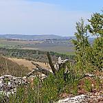 View of Balaklava