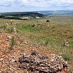 View of Sapun Mountain