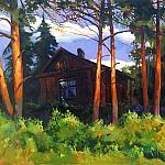 Q3YA — A house in a pine forest